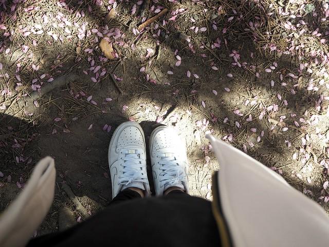 outfitshoesP5124961,candygirlcherrytreeparkP5124953,candygirloutfitP5124939, candy girl, pink, light pink, vaaleanpunainen, takki, pink coat, japanese style garden, japanilaistyylinen puutarha, roihuvuori, helsinki, suomi, finland, asukuvat, outfit pictures, muoti, fashion, cherry trees, kirsikankukkapuut, kirsikkapuut, kukat, flowers, blossom, pastellin värinen, pastel color, cherry park, kirsikka puisto, kiriskankukka puut, pink jacket, may, toukokuu, spring, kevät, valkoiset tennarit, lenkkarit, nike, nike air force 1, white sneakers,
