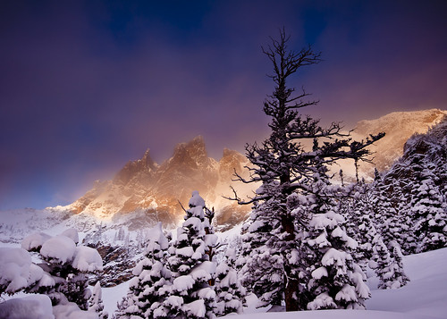 Thoughts of Winter | by Dan Ballard Photography