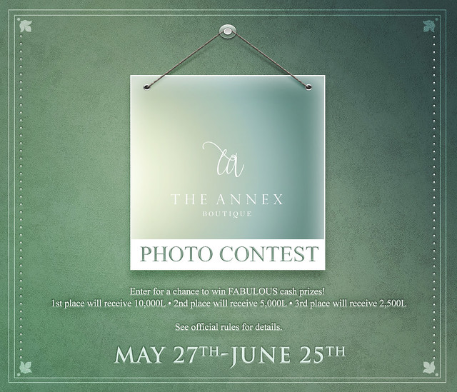 The Annex Photo Contest