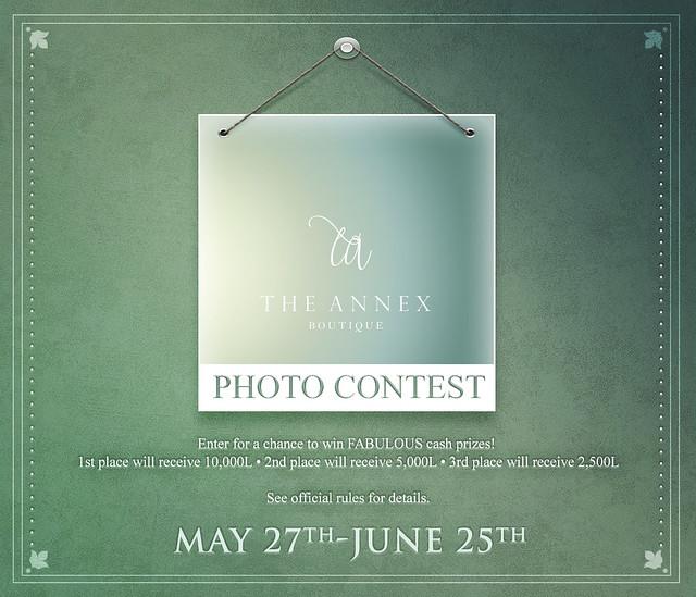 The Annex Photo Contest