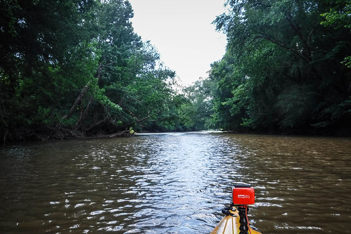 Goat Island in the Broad River-94
