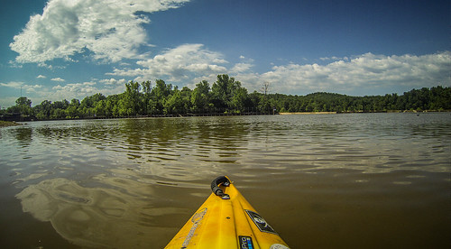 Goat Island in the Broad River-161