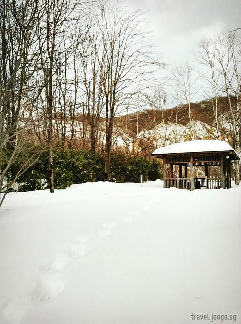 Noboribetsu Hell Valley 7 - travel.joogo.sg