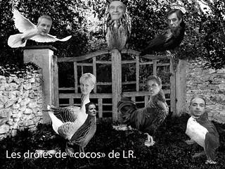 Les drôles de coco de LR