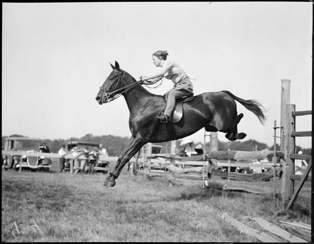 Horse jumping - Myopia