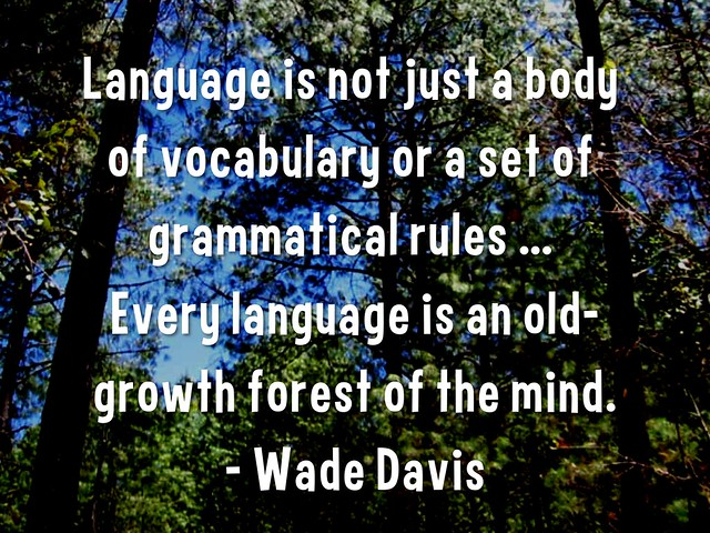 Language is an old-growth forest of the mind #quotes