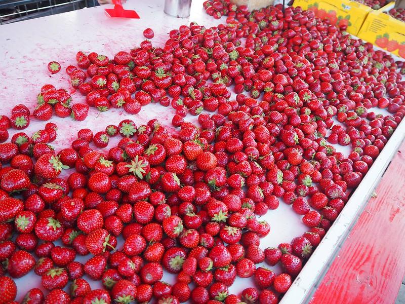 helsinkimansikatP7018342, helsinki, finland, market square, kauppatori, mansikat, strawberries, marjat, berries, iltatori, cheap, edullinen, suomalainen mansikka, polka, summer, kesä,
