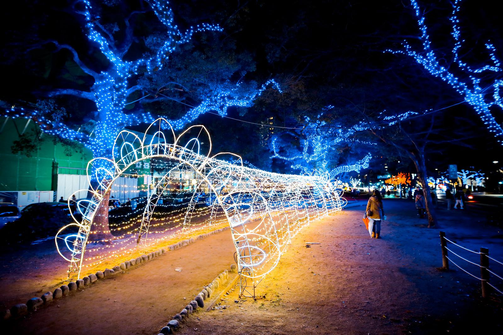 2016 廣島夢幻彩燈節 Hiroshima 24
