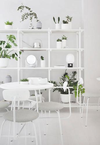 02-decoracion-de-interiores