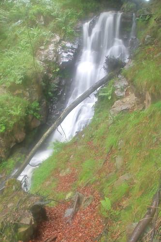 Parque natural de #Gorbeia #Orozko #DePaseoConLarri #Flickr -115