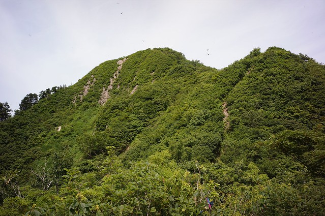 "Attack to the Mt, ""MIKOSIYAMA"""