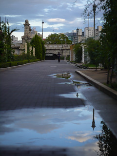 after the rain at Nakanoshima park | by hyossie