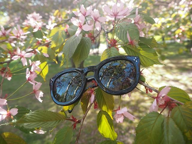 celinepreppyP5124982,candygirlcherryparkP5124886candygirlcherrytreeparkP5124953,candygirloutfitP5124939, candy girl, pink, light pink, vaaleanpunainen, takki, pink coat, japanese style garden, japanilaistyylinen puutarha, roihuvuori, helsinki, suomi, finland, asukuvat, outfit pictures, muoti, fashion, cherry trees, kirsikankukkapuut, kirsikkapuut, kukat, flowers, blossom, pastellin värinen, pastel color, cherry park, kirsikka puisto, kiriskankukka puut, pink jacket, may, toukokuu, spring, kevät,  vaaleat pitkät hiukset, blond long hair, celine sunglasses, celine preppy, celine sunnies, mustat, black,