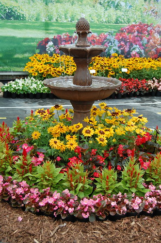Landscaping Around A Group Of Trees : Floriferous fountain on display at benary hort group flickr