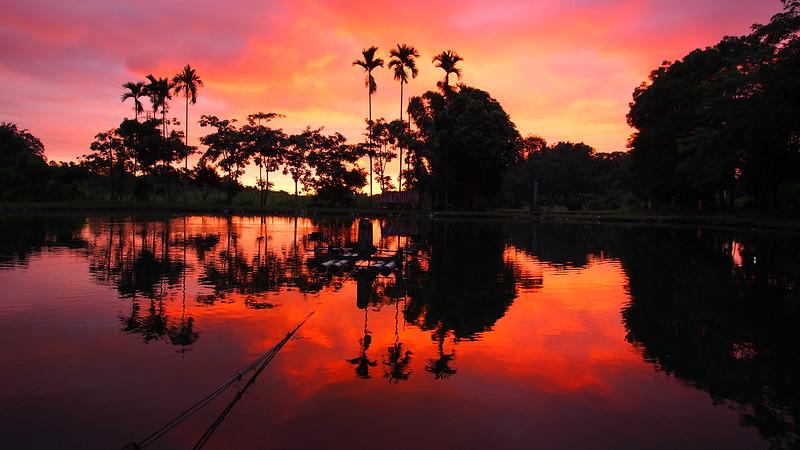 無敵午景,釣魚池XD|嘉義 Chiayi