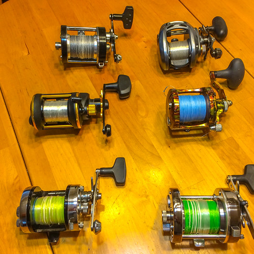 Official 2016 surf fishing thread    - Page 25