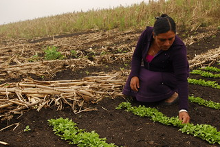 Mexico mujeres rurales - Esther 1 | by Oxfam International