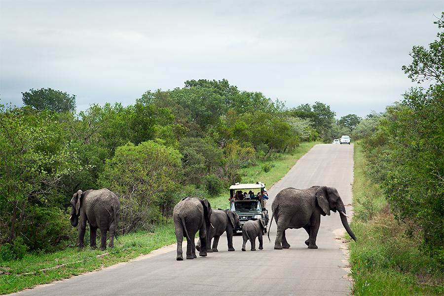 Sydafrika dag 2