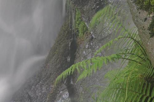 Parque natural de #Gorbeia #Orozko #DePaseoConLarri #Flickr -124