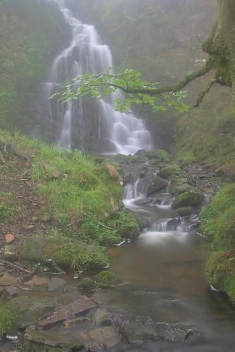 Parque natural de #Gorbeia #Orozko #DePaseoConLarri #Flickr -092