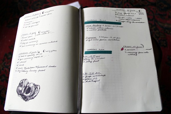 Bullet journal day page - Misericordia