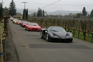 Line of Ferraris | by drbeasleys.com