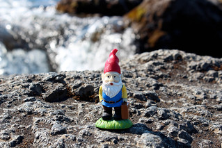 Cedric at Goðafoss | by Ashlae | oh, ladycakes