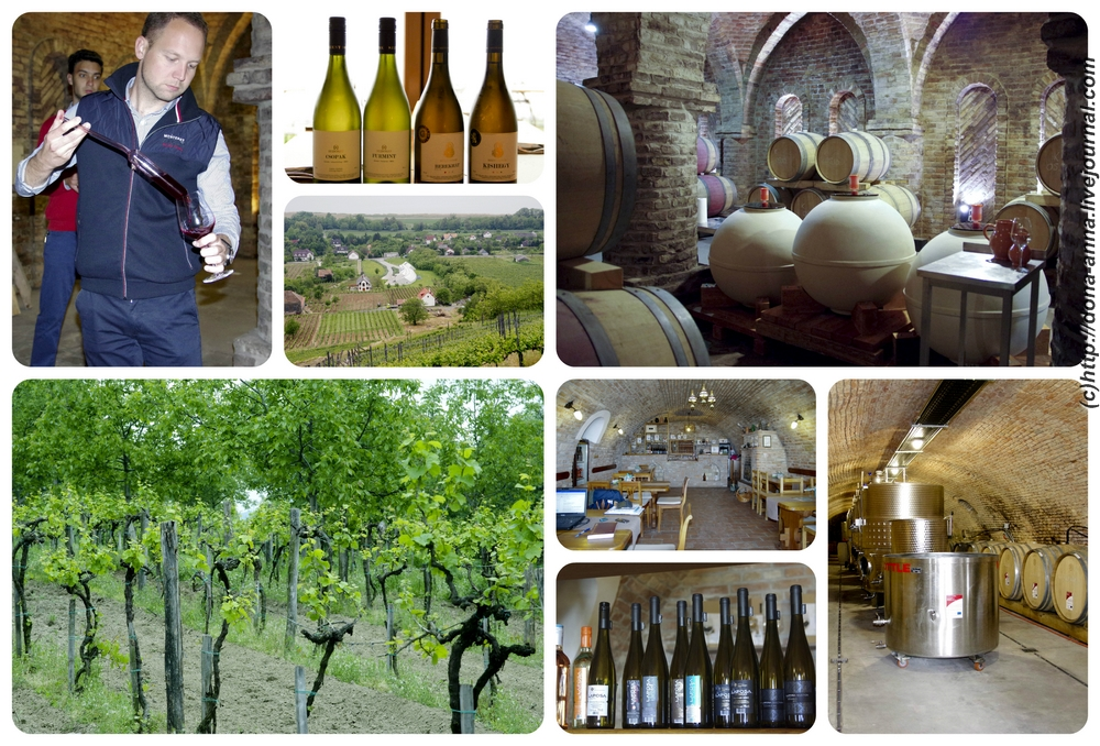 Balaton-wineries-Collage-a