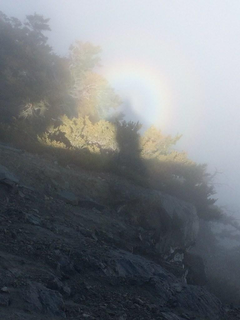 one in a billion rainbow