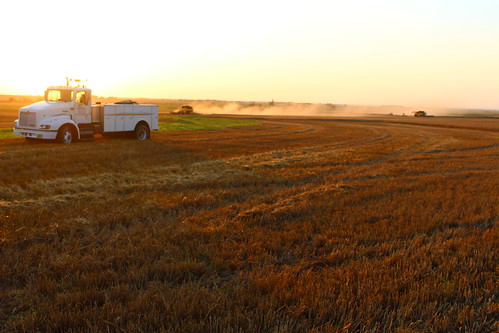 2 combines rolling - nice sight to see.