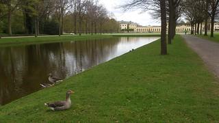 Staatpark Kassel