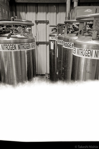 nitrogen cylinders, to fill package inside