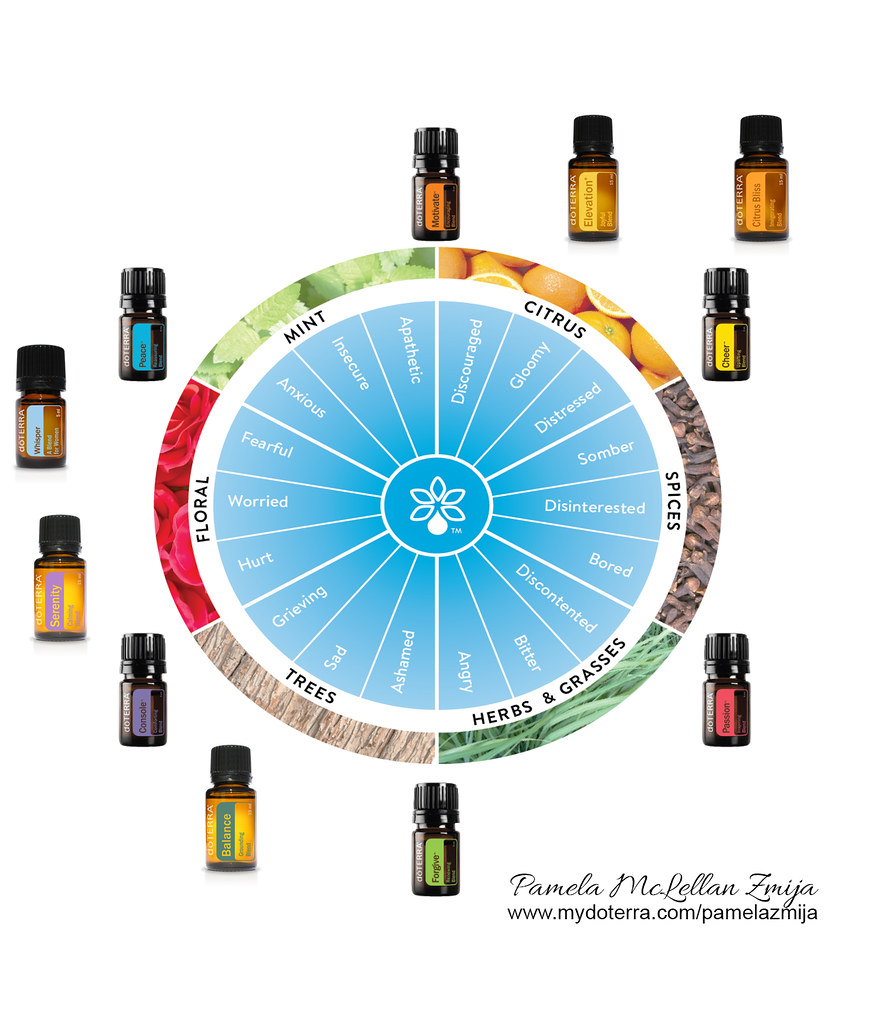 Emotional Wheel - doTERRA high res - with Mood Matrix Oils - Pamela McLellan Zmija
