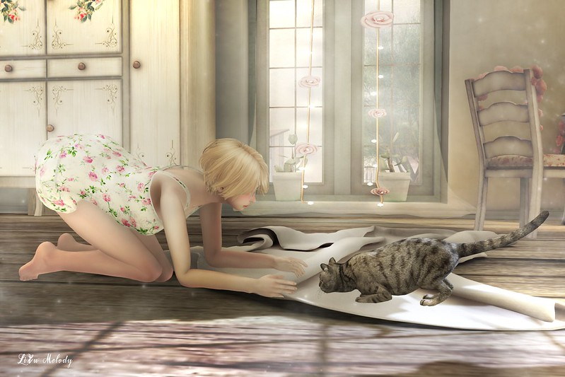 #6_Mischievous cat
