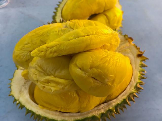 SK6363-D24-Durian