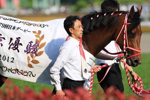 日本ダービー勝ち馬 ディープブリランテ