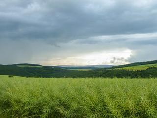 Regenguss und Gewitter nahen auf der Dämmerschleife