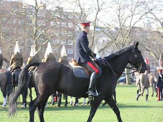 The Household Cavalry prepare for inspection at Hyde Park | by Alex von Schmidt