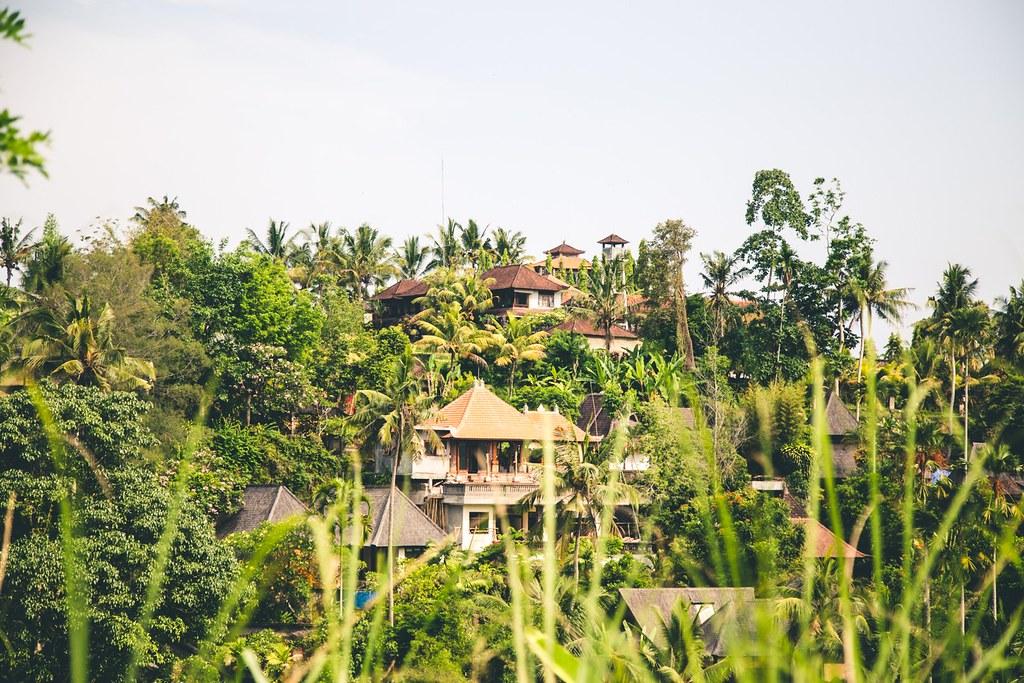 Billeddagbog Bali-1-29