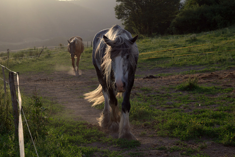 Heading toward
