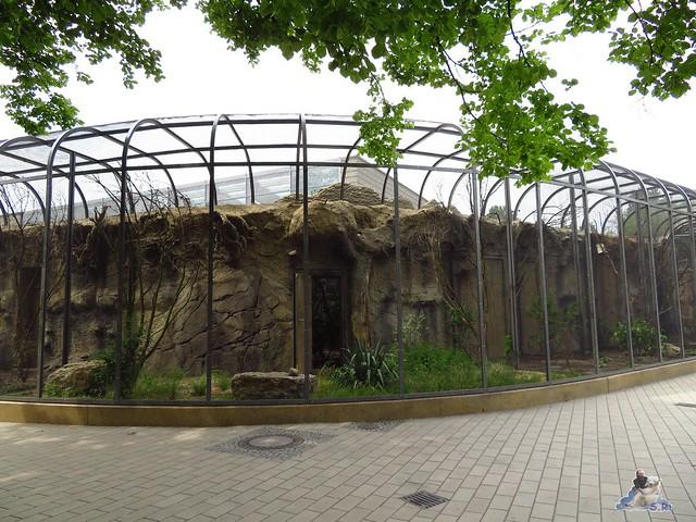 Zoo Berlin 27.05.2016   033