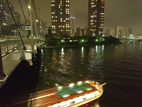 night river cruise