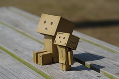 Danbo takes a rest again