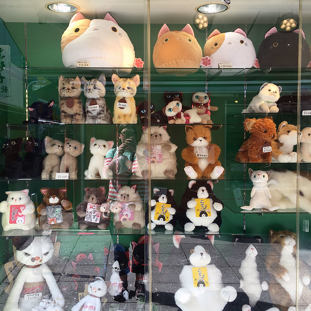Cat shop on Nakamise Dori