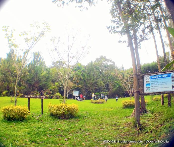 LivingMarjorney-Binahon-Agroforestry-Farm-Bukidnon (91)
