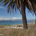 playas de la ciudad de Vigo (8)