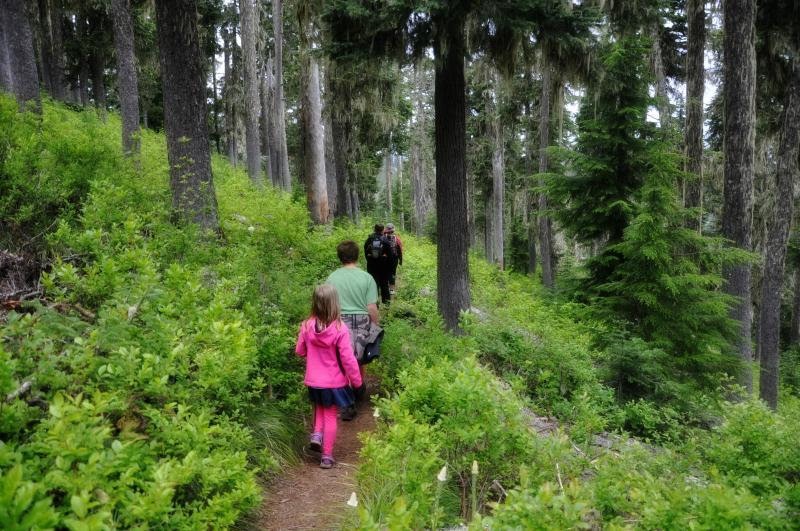 Triangulation Peak Hike 18 @ Mt. Hope Chronicles