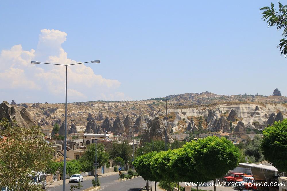 Y_Turkey011