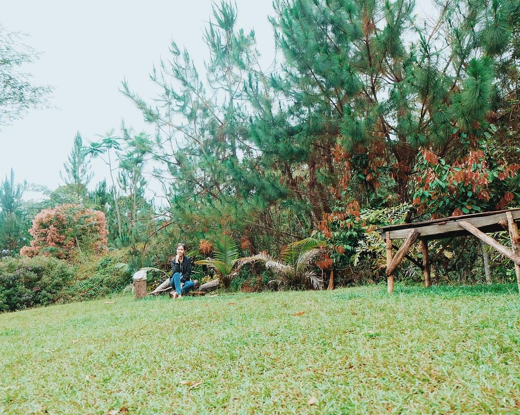 binahon farm bukidnon