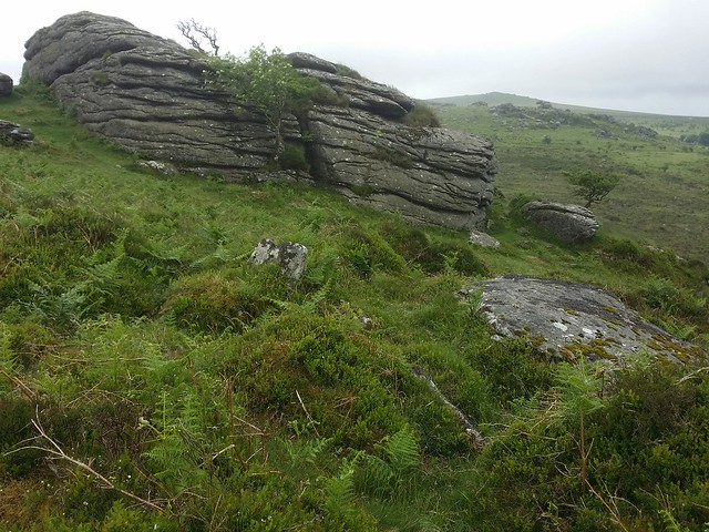 Little Holwell Tor